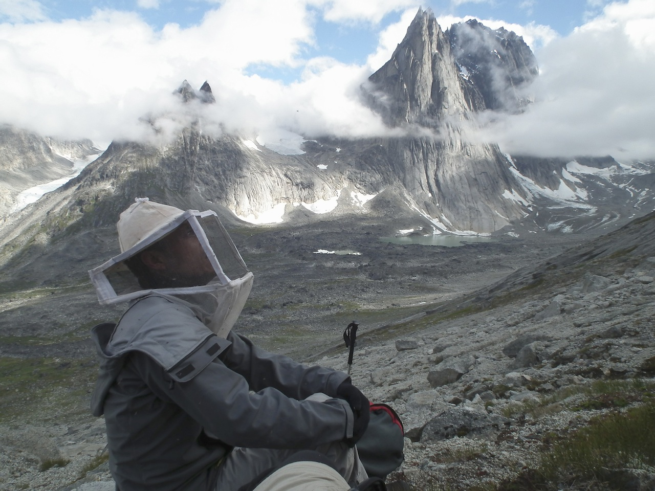 Essential protection against South Greenland's mosquitoes. In lower Hermelndal with northwest face of Hermelnberg (1,912m) behind.