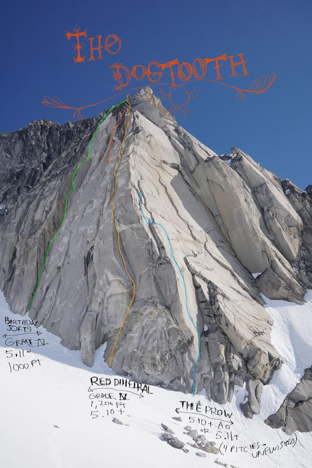 The Dog Tooth, a 1,200-foot chunk of clean white granite, showing the two completed routes and one attempt from 2016. All three of these lines are to the left of the peak's 2011 first ascent route.