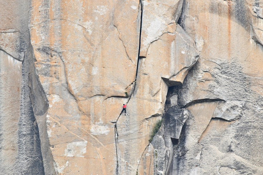 Alex Honnold in the Monster Offwidth section of Freerider during his free solo ascent of El Capitan.