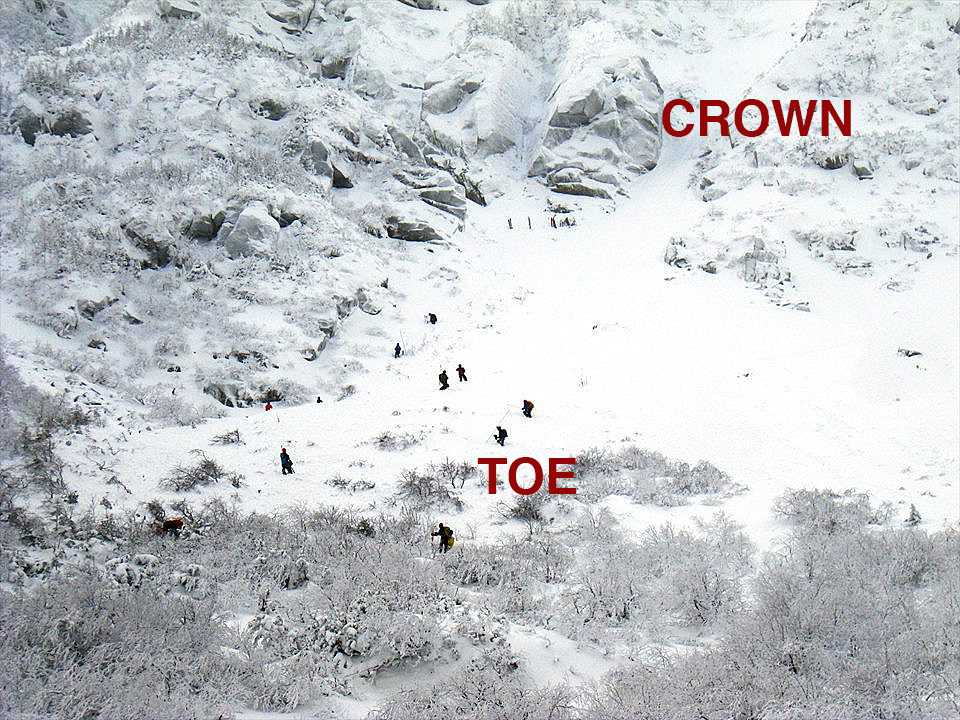 Rescuers probe the debris of an avalanche in Tuckerman Ravine that caught five people in its path.